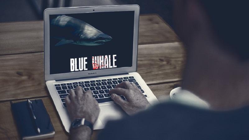 بازی نهنگ آبی چیست؟