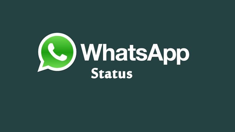 وضعیت واتساپ و همه چیز در رابطه با گذاشتن استاتوس در واتس اپ و ترفند های آن
