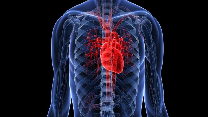 علائم هشدار بیماری های قلبی کدامند و چطور نسبت به آن ها آگاه شویم؟