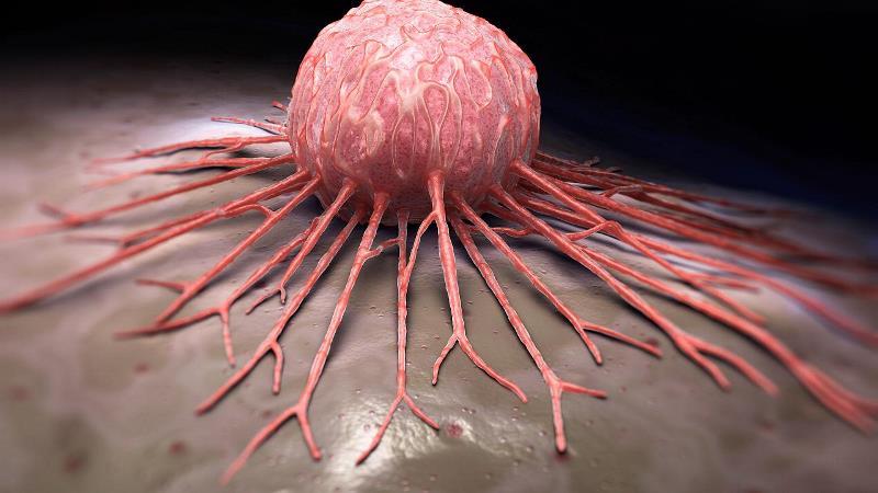 پیشگیری از سرطان را به کمک این روش ها انجام دهید