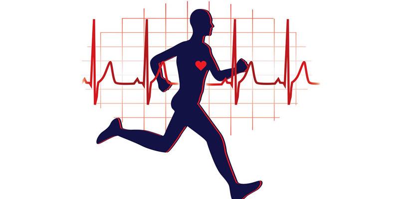 افزایش فعالیت های فیزیکی موثر در افزایش فعالیت پایدار قلب
