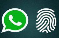 واتساپ ویژگی امنیتی بایومتریک را به نسخه وب و دسکتاپ آورد